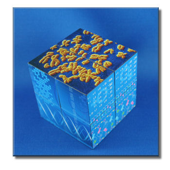 DNA Cube
