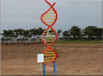 Giant Steel DNA Model